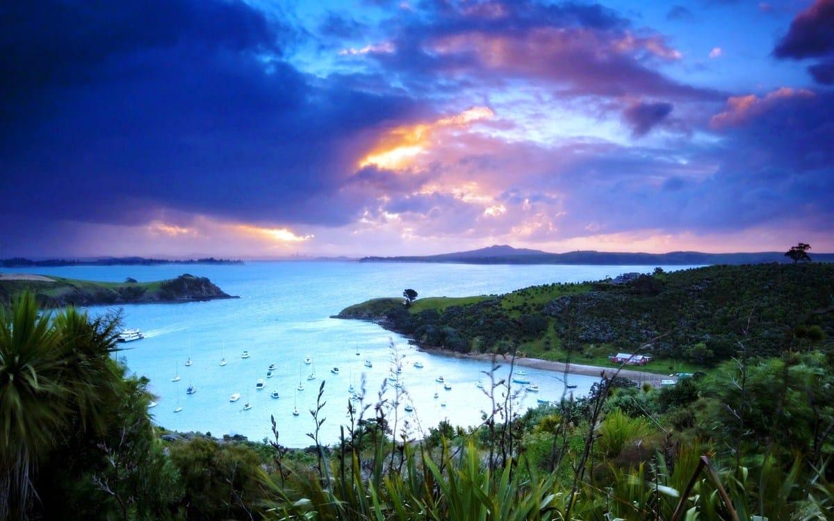 waiheke-island-0