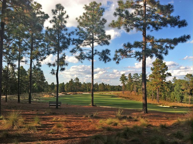 the-dormie-golf-club-14