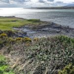 Ardglass Golf Course