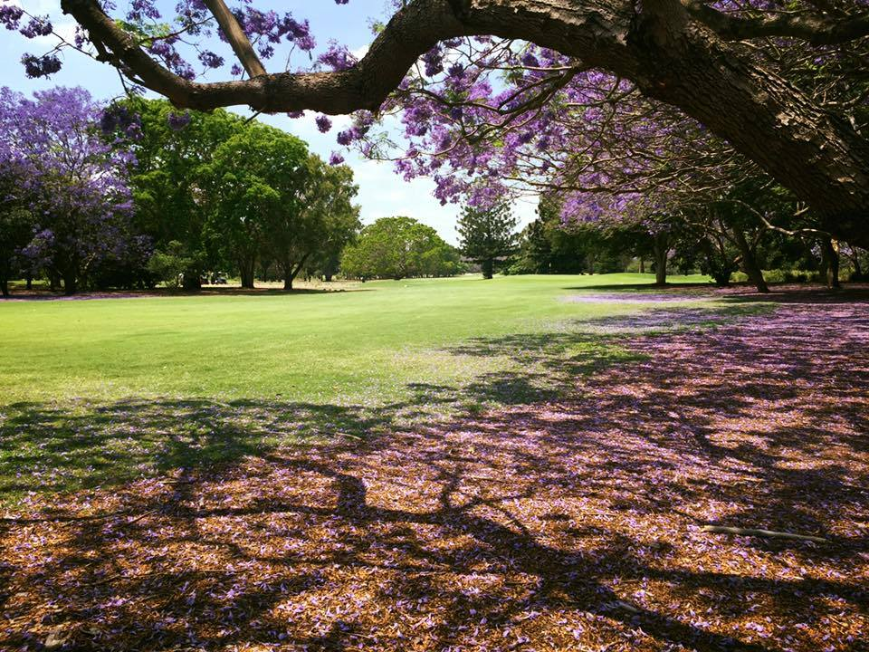 indooroopilly-golf-club-23