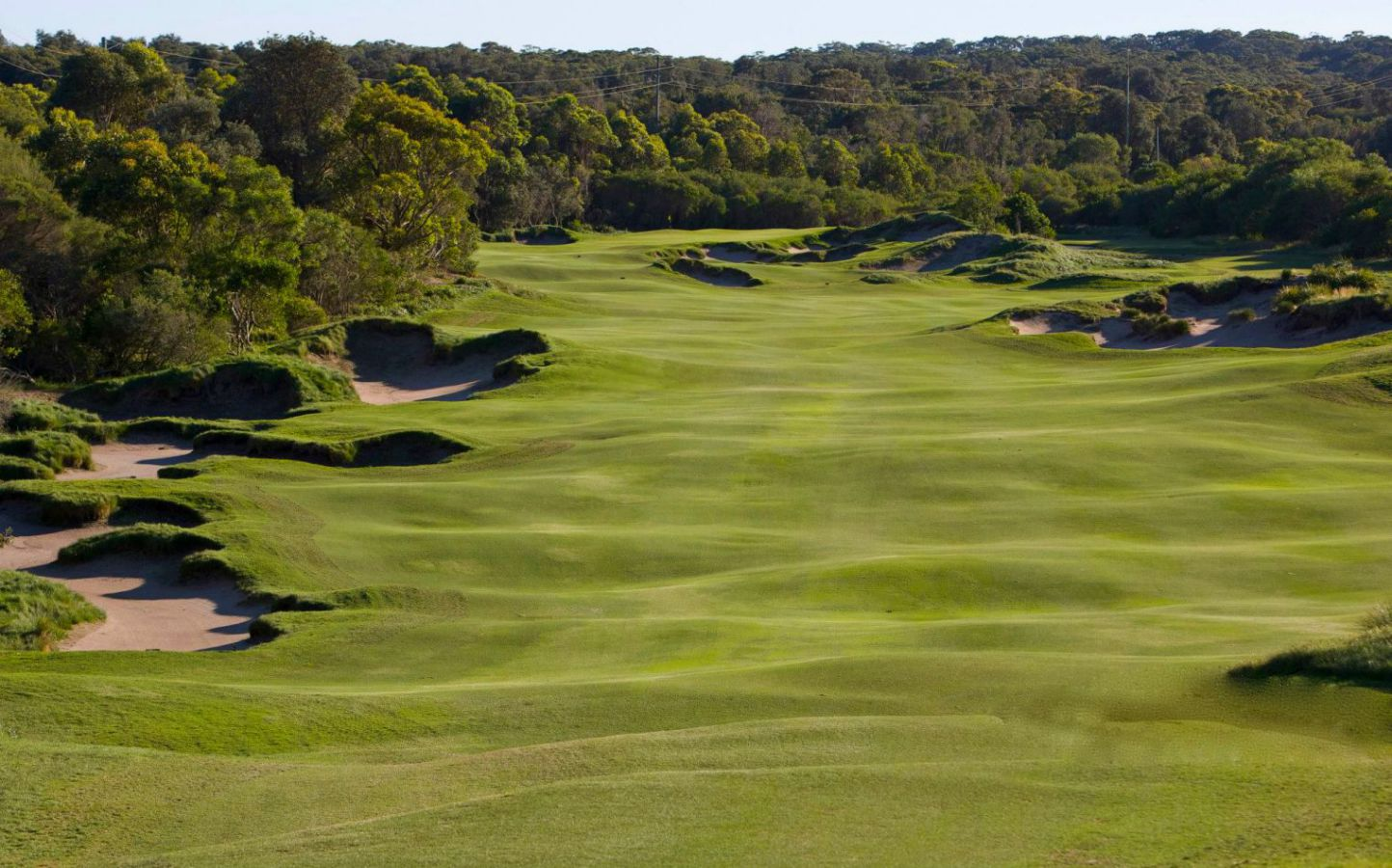 magenta-shore-golf-22