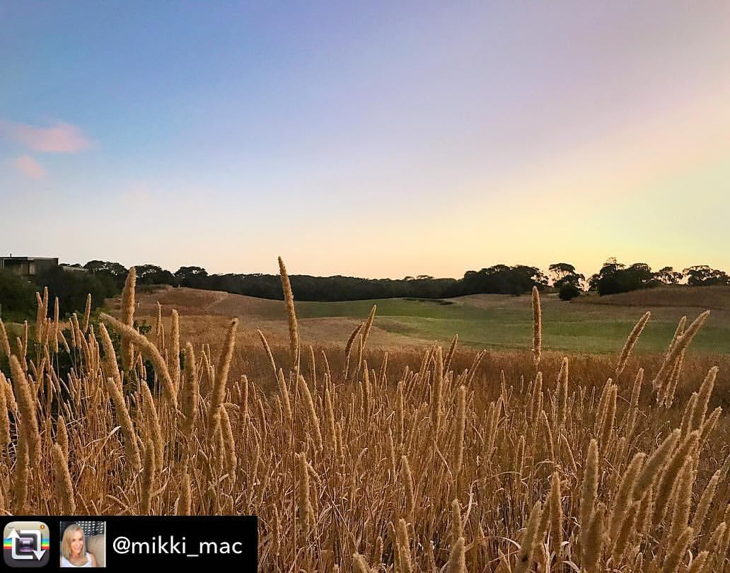 Moonah Links Golf Resort