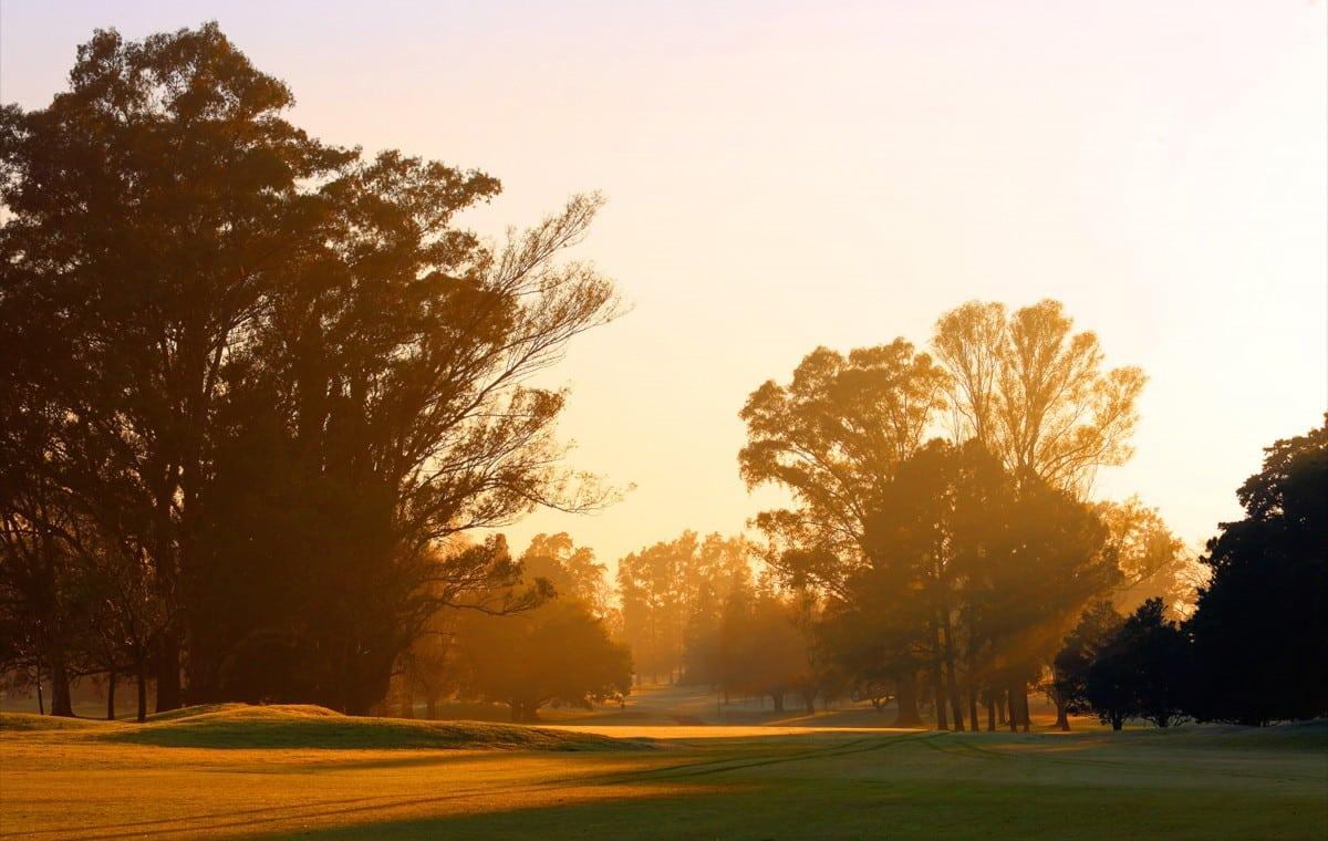 olivos-golf-club-5