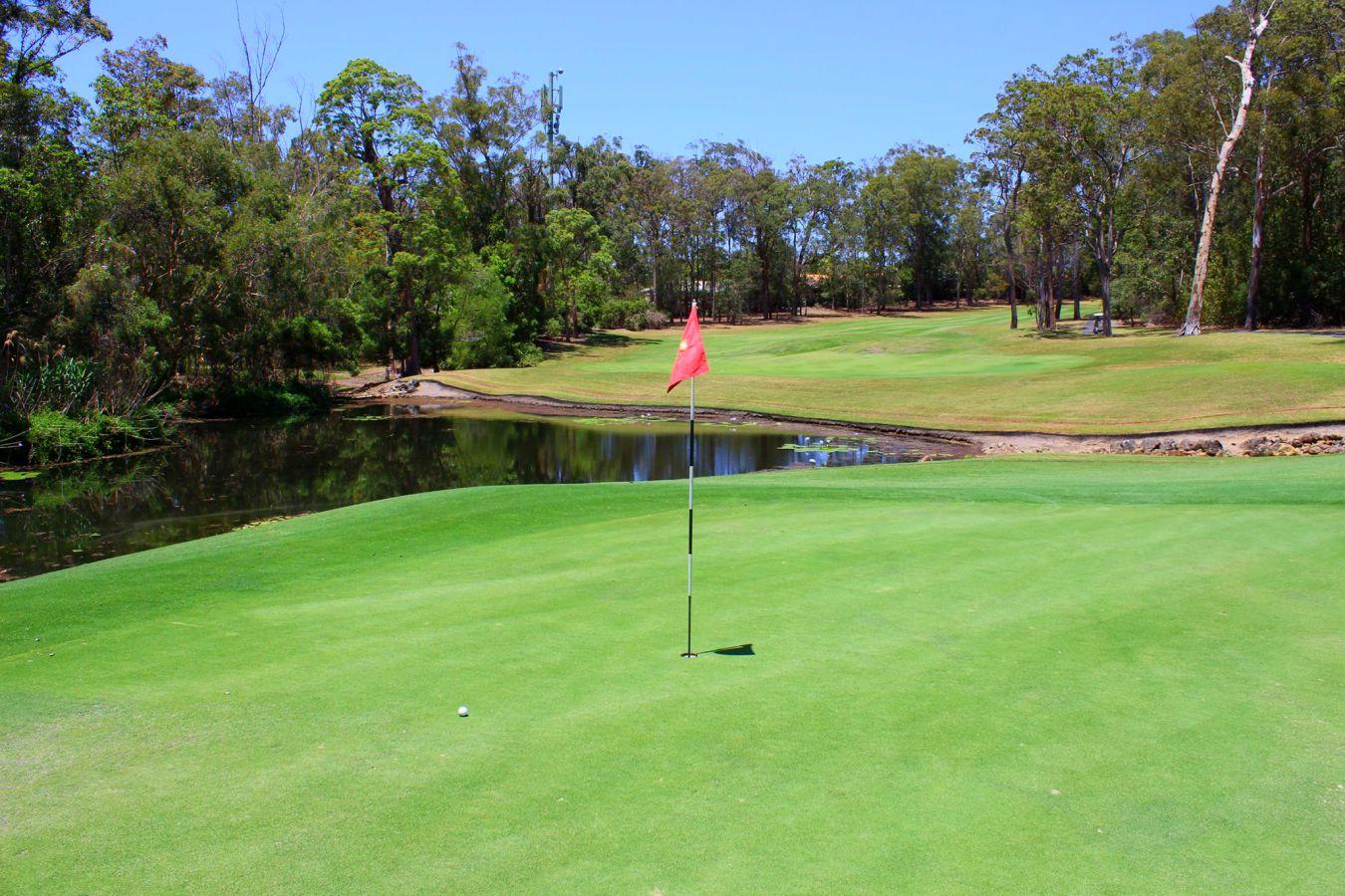 palmer-gold-golf-course-25