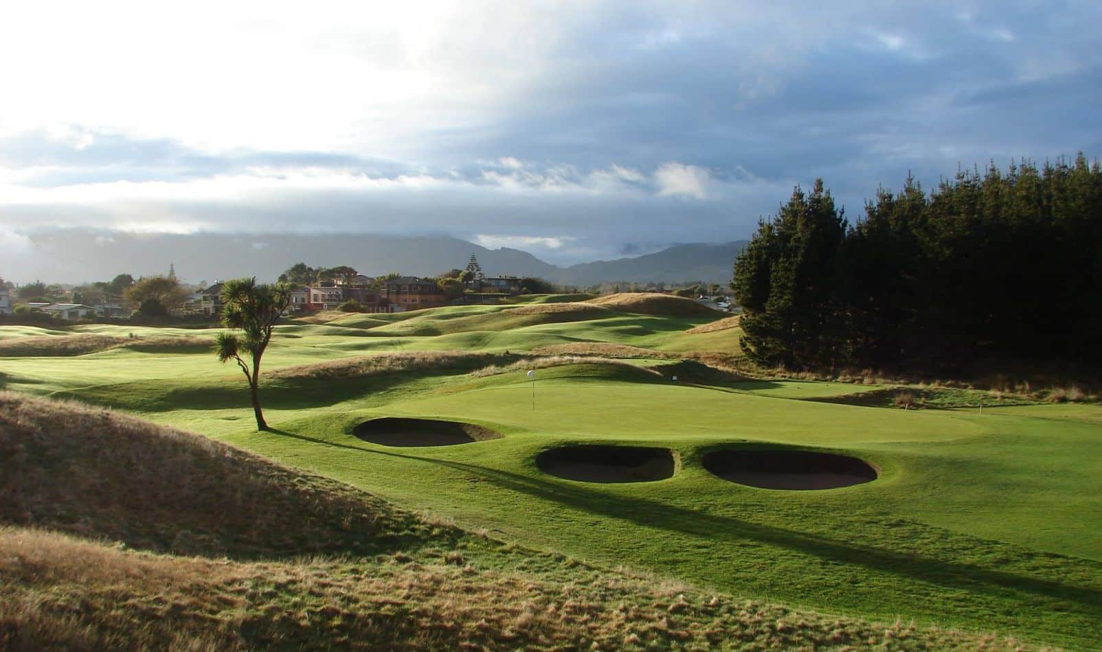 paraparaumu-golf-28