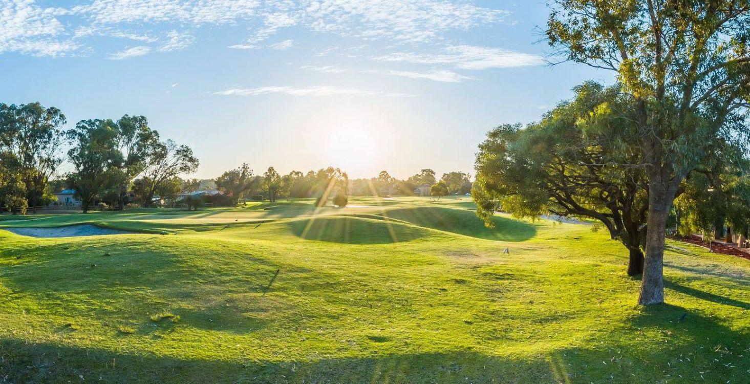 the-vines-golf-resort-23