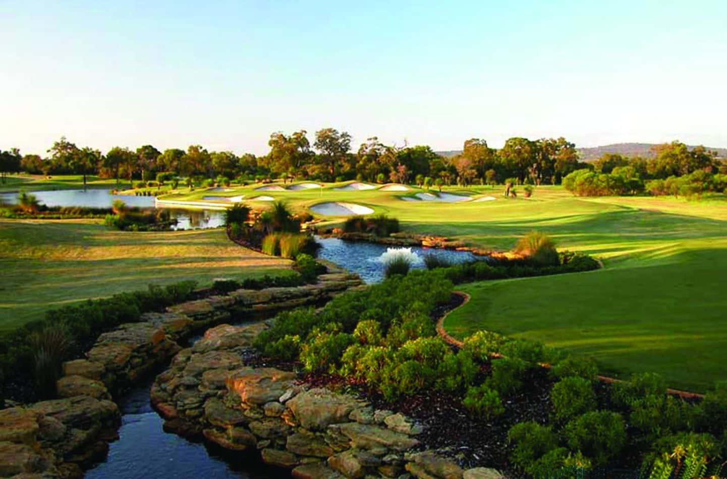 the-vines-golf-resort-24