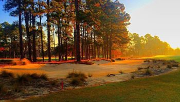pine-needles-golf-course-28