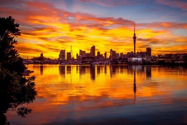 Portfolio New Zealand